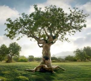 albero con corpi