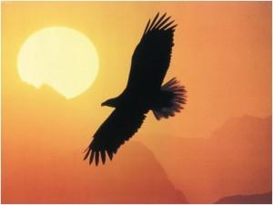 aquila_tramonto2