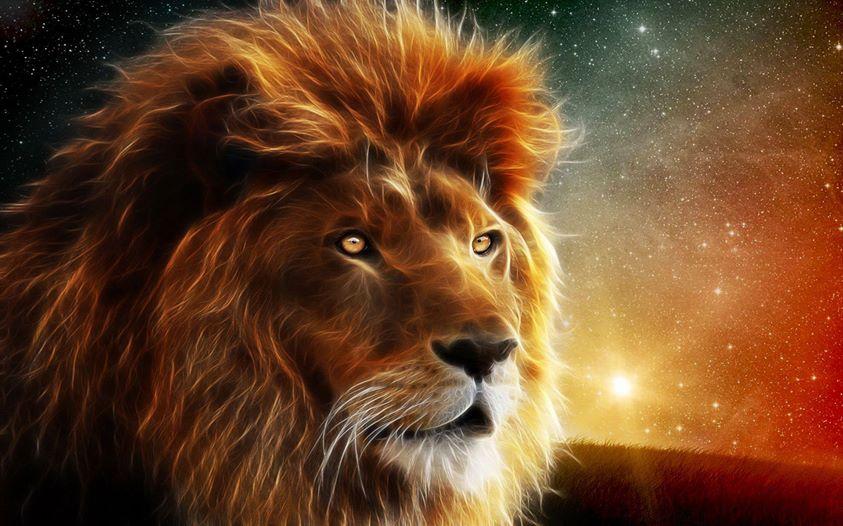 solrik leone med video hd erotisk video