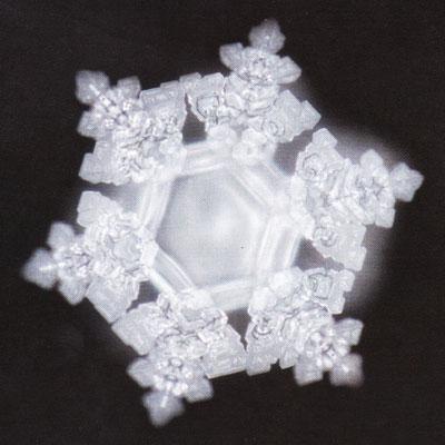 cristallo d'acqua